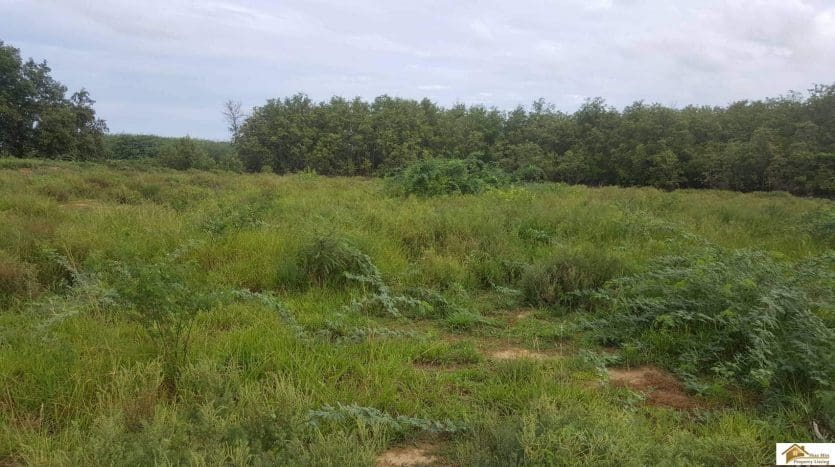 Near Beach Land In Cha Am – Only 200M From Cha Am Beach